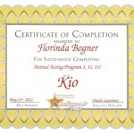 Hollywood Paws Zertifikat