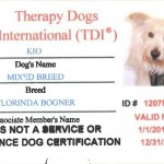 Therapy Dogs International Zertifikat