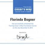 TCW Certificate Dez. 13 copy