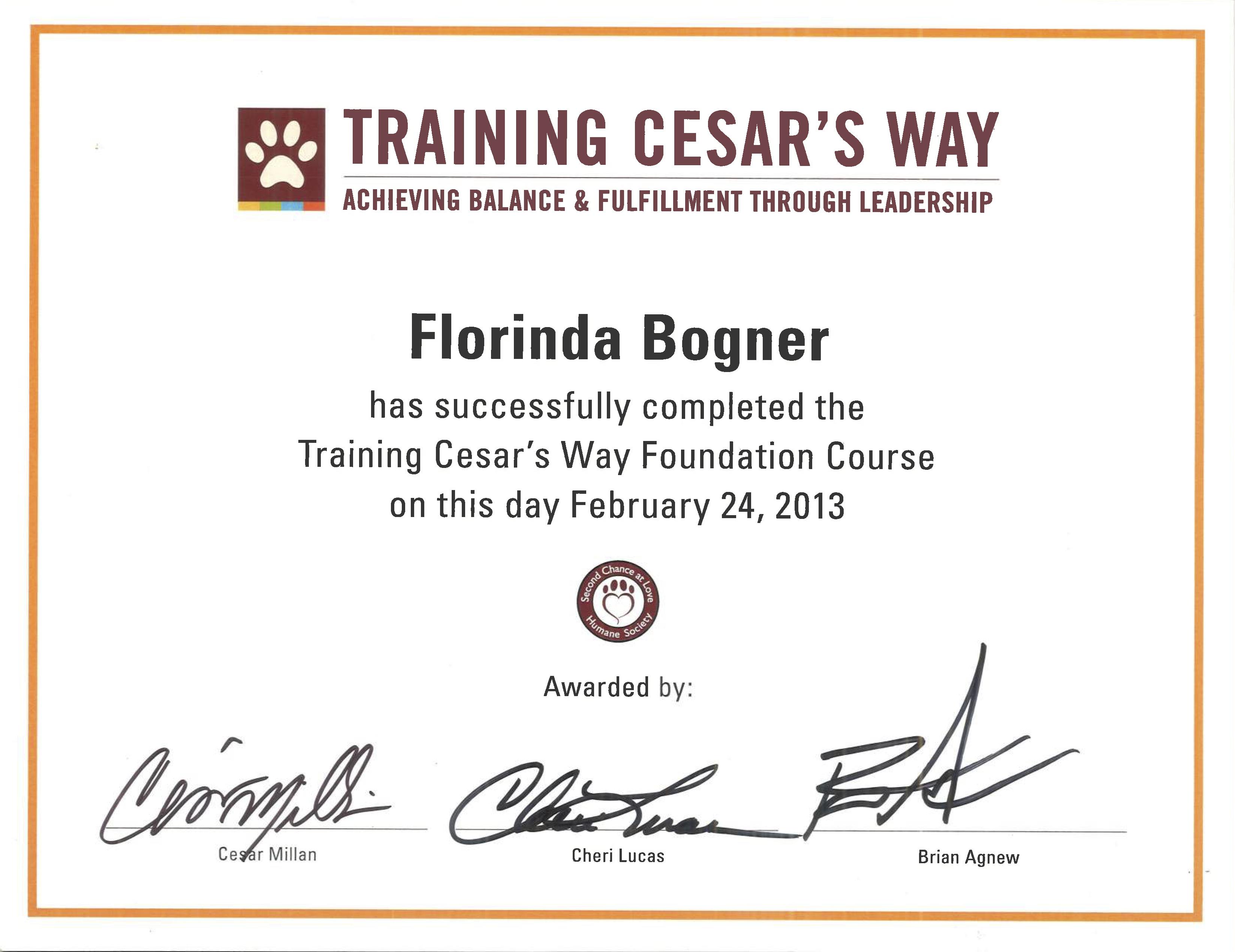 Cesar's Way Kurs Februar 2013