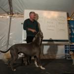 DAY 2 - DogPark-6