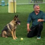 DAY 2 - DogPark-75